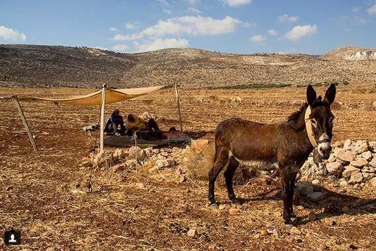 Bedouin_campJPG